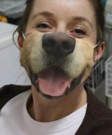 dogsnoutmask